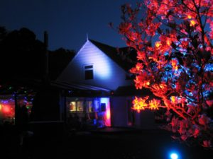 night time tree and house lighting